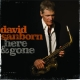 david sanborn - here & gone