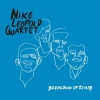 niko leopold quartet - breakdown of reality