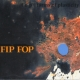 fop - forms of plasticity - fip fop