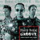harry sokal groove - where sparks start to fly
